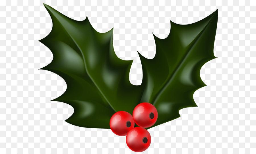 Christmas Holly Cartoon.Christmas Decoration Cartoon Png Download 6000 4982 Free