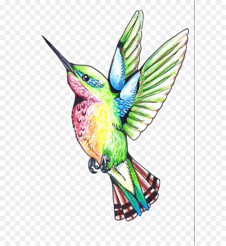 Colibri Tattoo Uomo colibrì becco ala, piuma, illustrazione - hummingbird