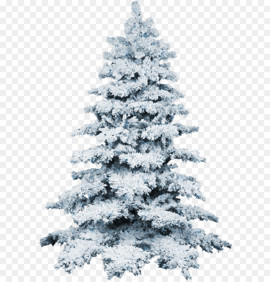 White Christmas Tree Png Transparent.Christmas Black And White Png Download 658 950 Free