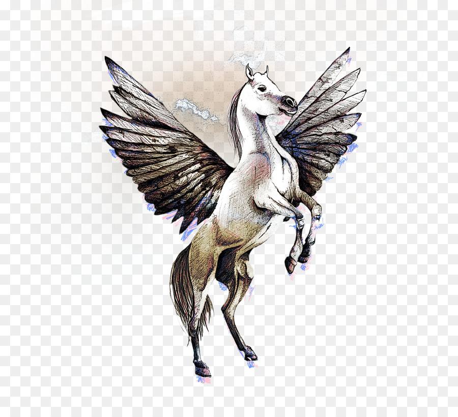 Pegaso Cavallo Alato Disegno.Pegasus Cavallo Di Disegno Pegasus Scaricare Png Disegno