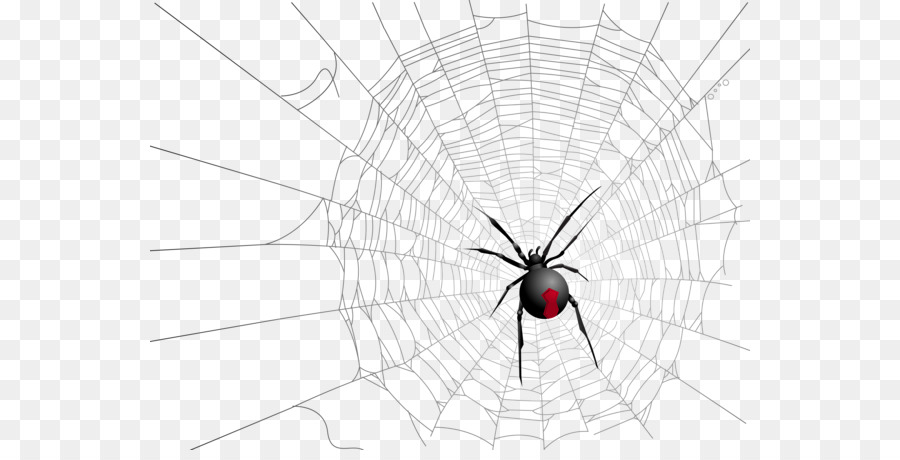 Image result for black widow spider web png