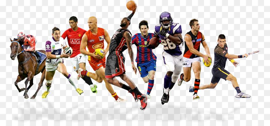Sportwetten rugby