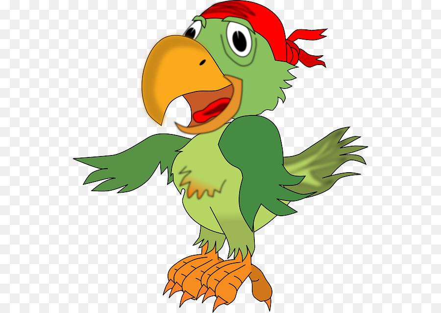 Piraten Papagei Piracy Clip Art Kostenloser Loro