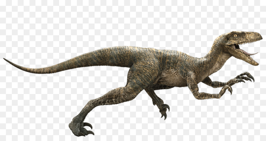 Jurassic World Png Download 1024 530 Free Transparent Jurassic Park Png Download Cleanpng Kisspng Having lived for hundreds of millions of years during the mesozoic era, dinosaurs are an incredibly diverse group, ranging from modern birds, to species such as tyrannosaurus. jurassic world png download 1024 530