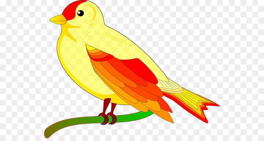 bird cartoon png download - 600*471 - free transparent bird png download. -  cleanpng / kisspng  cleanpng