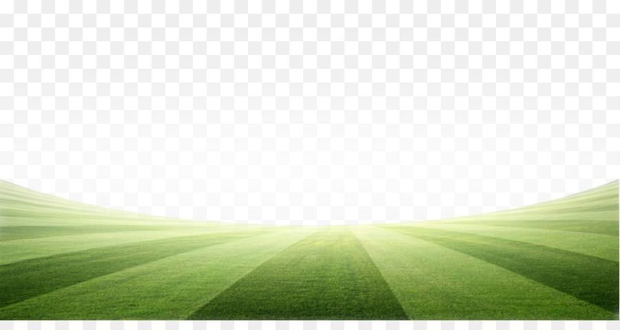 Rasen Wiese Grun Energie Wallpaper Schatten Fussball Feld