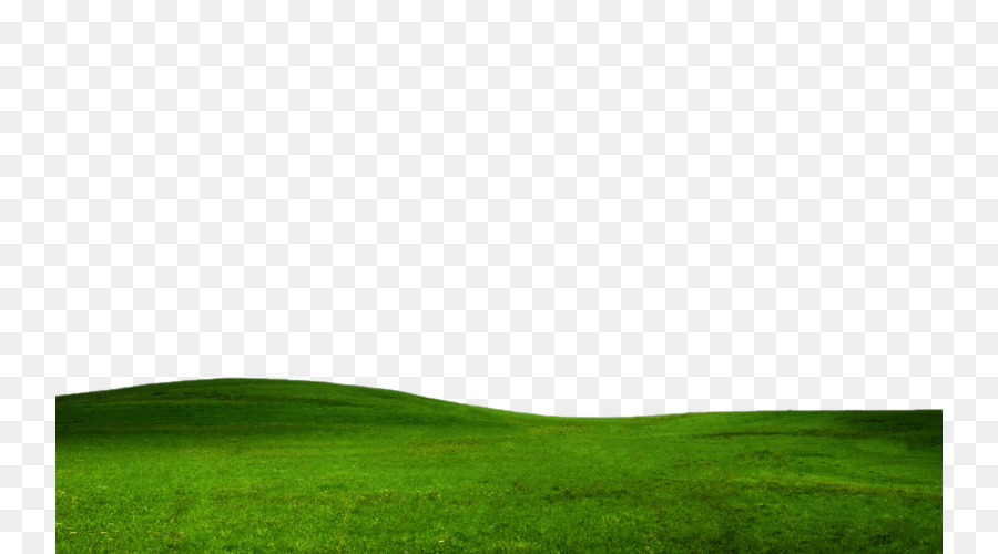 green grass background png download 800 500 free transparent lawn png download cleanpng kisspng green grass background png download