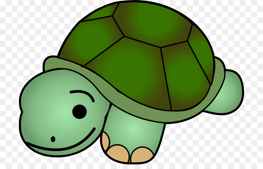 Sea Turtle Background Png Download 772 565 Free Transparent