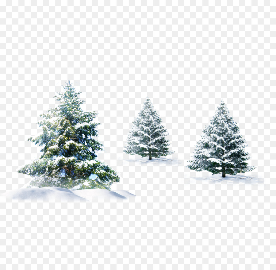 White Christmas Tree Png.White Christmas Tree Png Download 1789 1742 Free