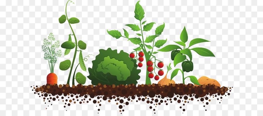 flower garden png download 694 393 free transparent sensory garden png download cleanpng kisspng flower garden png download 694 393