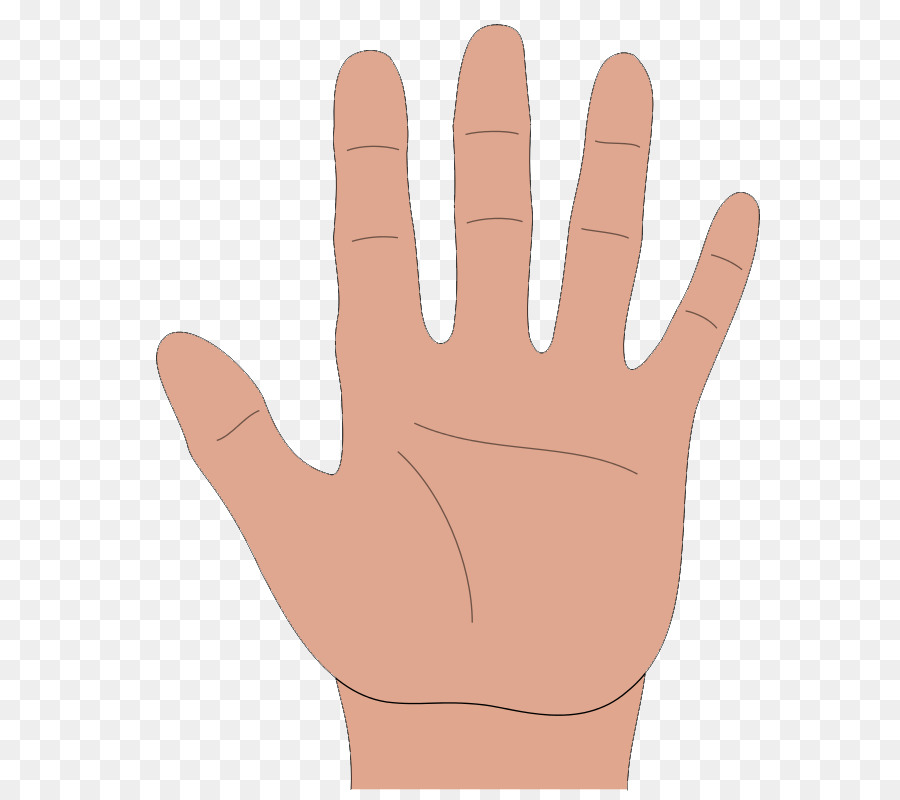 High Five Png Download 654 800 Free Transparent Hand Png Download Cleanpng Kisspng More than 12 million free png images available for download. 654 800 free transparent hand png