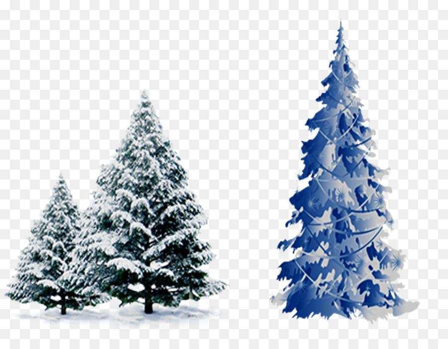 Foto Con La Neve Di Natale.Albero Di Natale Di Cedro Pino Abete Rosso Con La Neve Di Pino Scaricare Png Disegno Png Trasparente Abete Png Scaricare