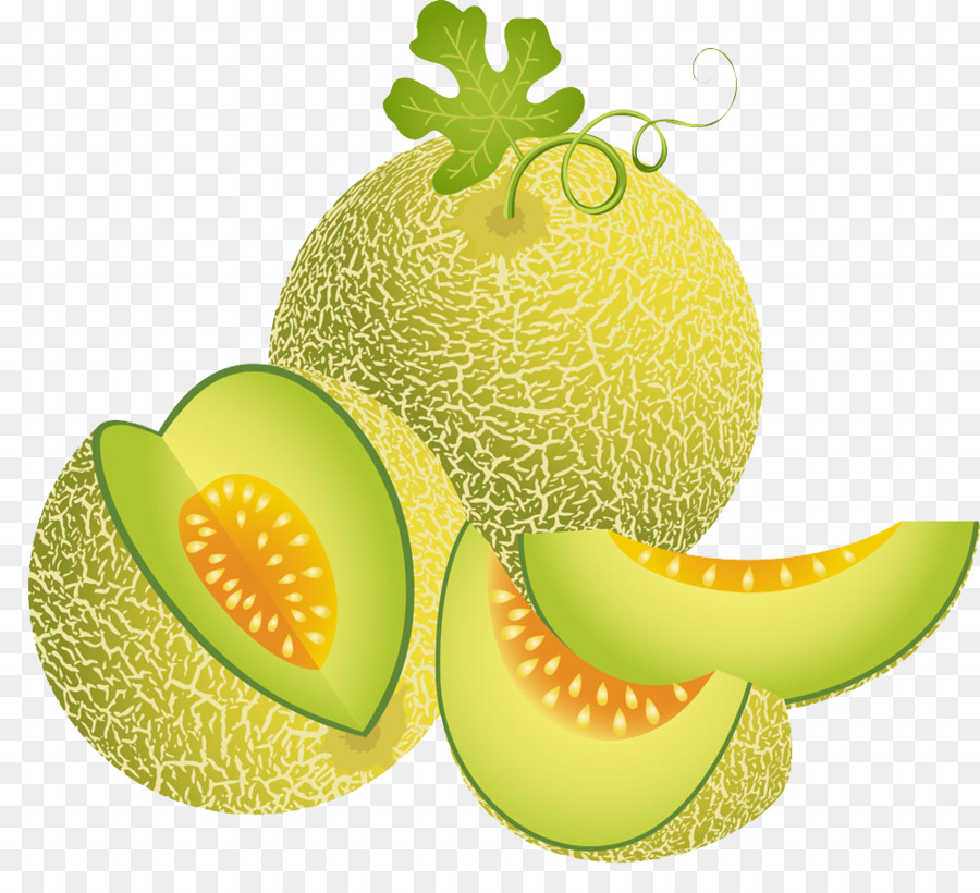 Vegetable Cartoon Png Download 1000 906 Free Transparent Cantaloupe Png Download Cleanpng Kisspng Click download buttons and get our best selection of cartoon cantaloupe png images with transparant background for totally free. vegetable cartoon png download 1000