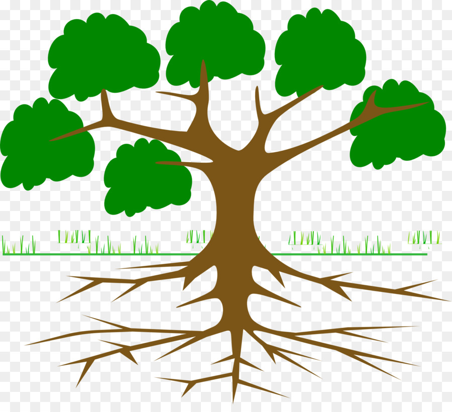 Tree Of Life Png Download 1920 1718 Free Transparent Root Png Download Cleanpng Kisspng See more of the tree of life on facebook. 1920 1718 free transparent root png