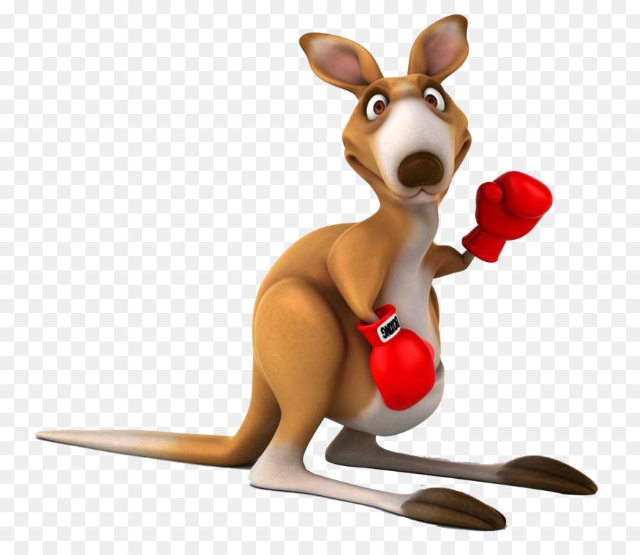 Transparent Boxing Kangaroo Cartoon - ImageFootball