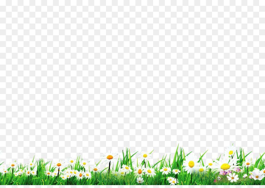 green grass background png download 2480 1735 free transparent lawn png download cleanpng kisspng green grass background png download