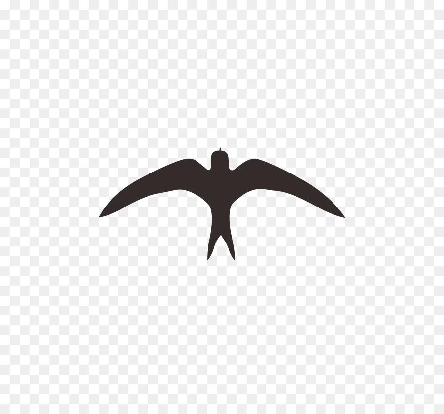 black line background png download 828 828 free transparent swallow png download cleanpng kisspng black line background png download