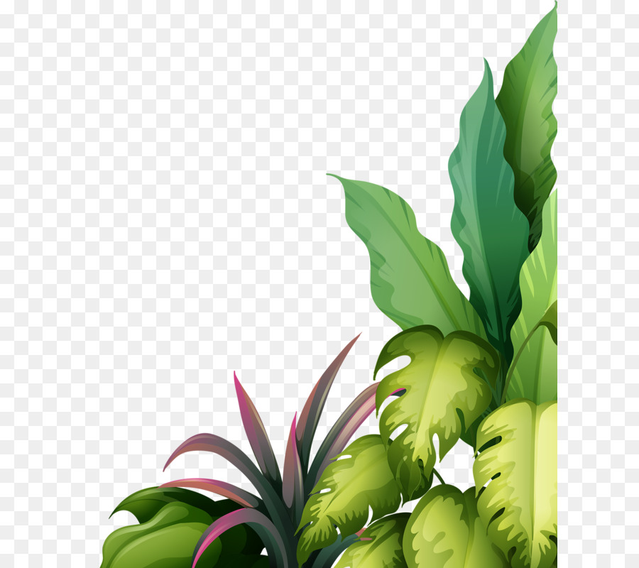 Green Leaf Watercolor Png Download 671 800 Free