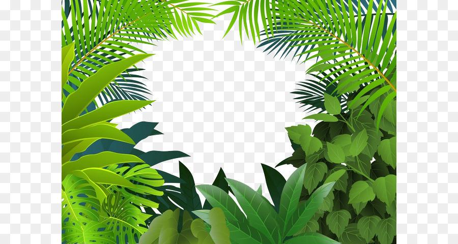 Palm Tree Leaf Png Download 658 480 Free Transparent Tropical Rainforest Png Download Cleanpng Kisspng Download 23,039 jungle leaves free vectors. palm tree leaf png download 658 480