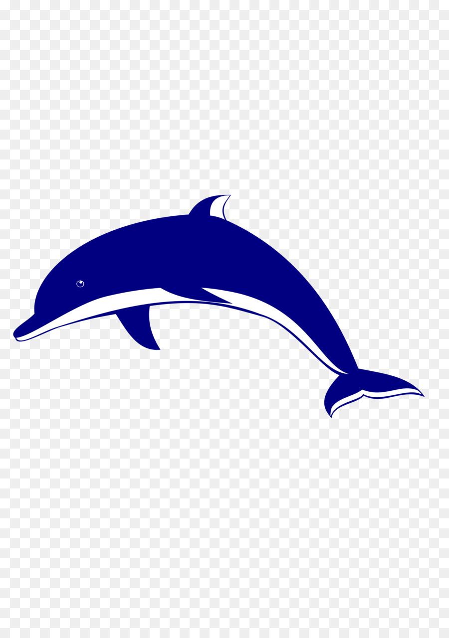 delfine bilder kostenlos  ausmalbilder