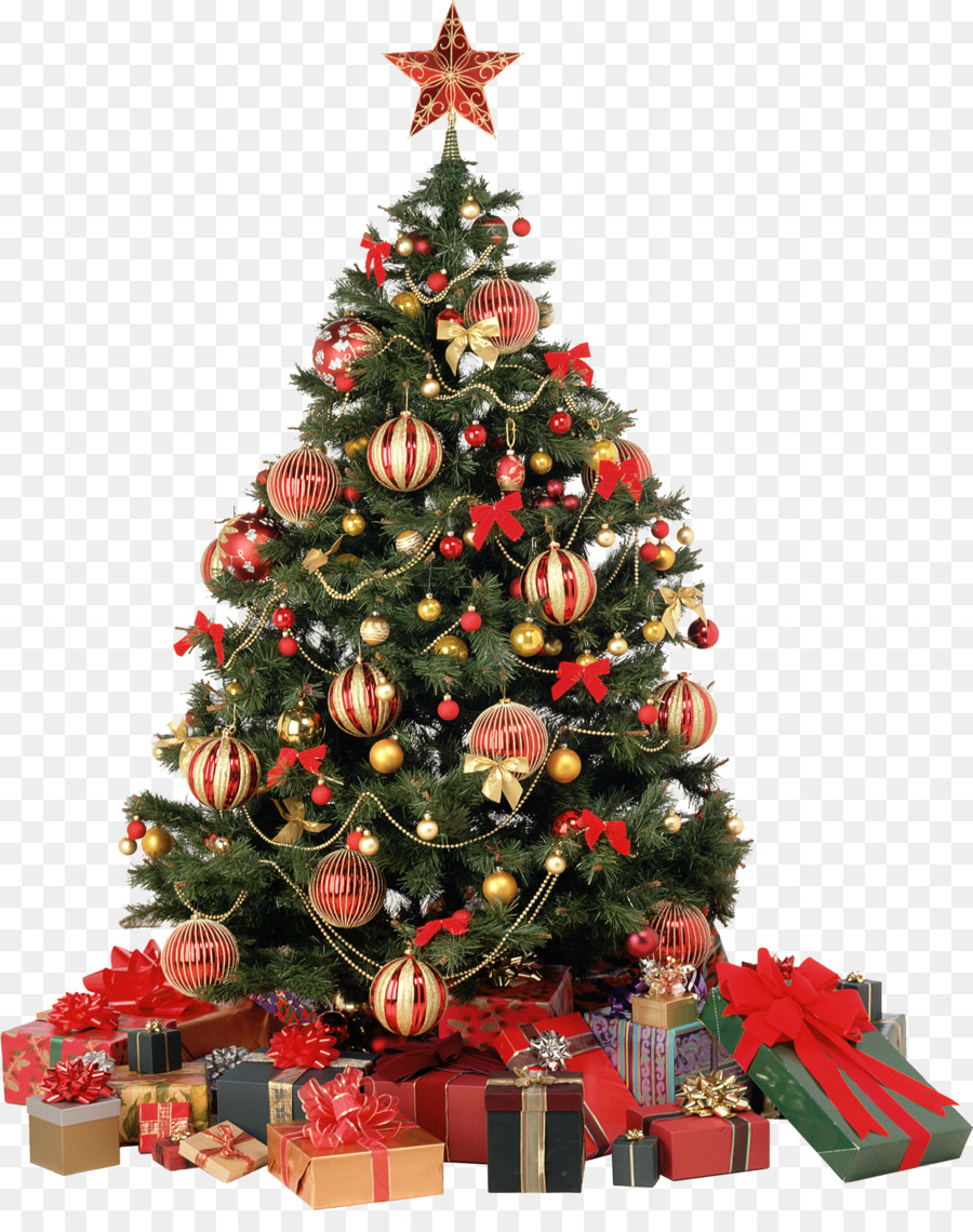 Christmas Tree Lights Png Download 1456 1812 Free Transparent Candy Cane Png Download Cleanpng Kisspng