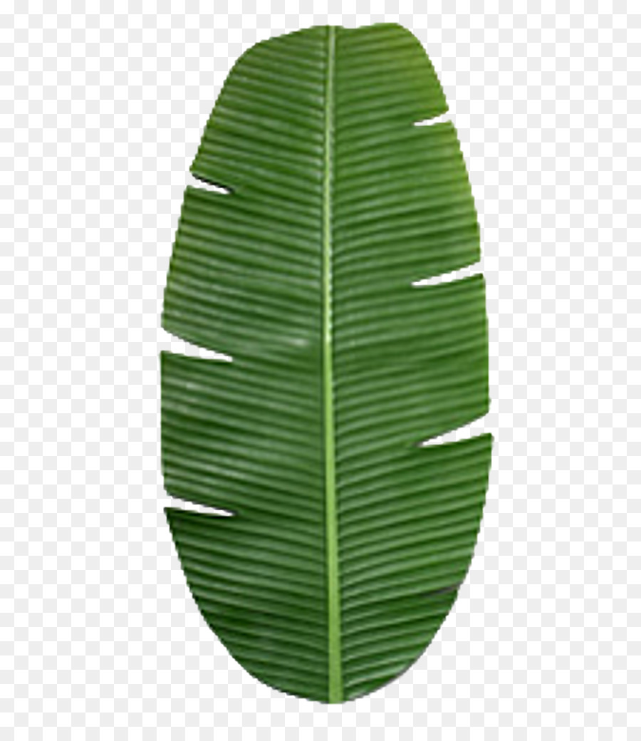 banana leaf clipart png download 512 1024 free transparent banana leaf png download cleanpng kisspng banana leaf clipart png download 512