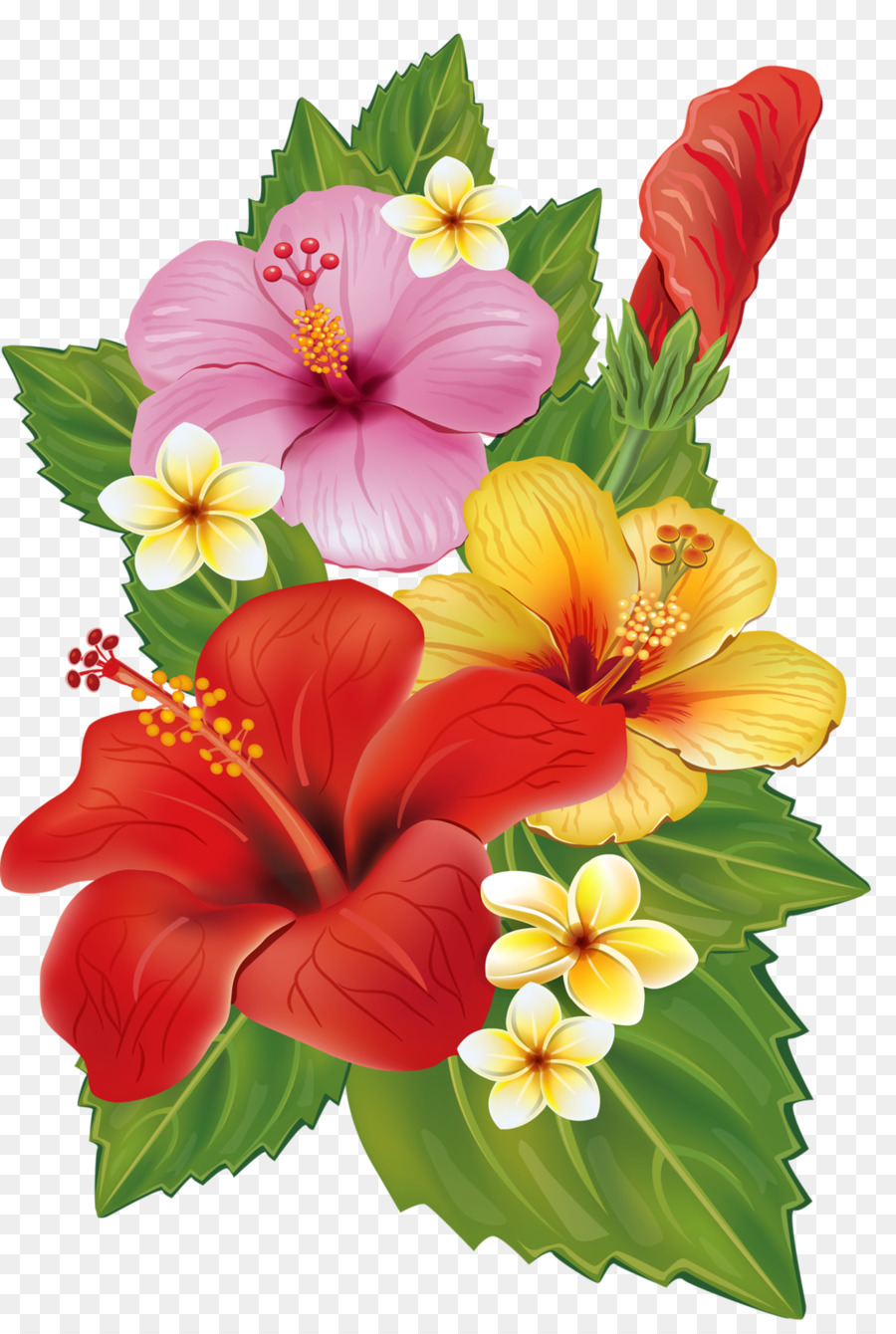 Bouquet Of Flowers Drawing Png Download 1085 1600 Free Transparent Flower Png Download Cleanpng Kisspng