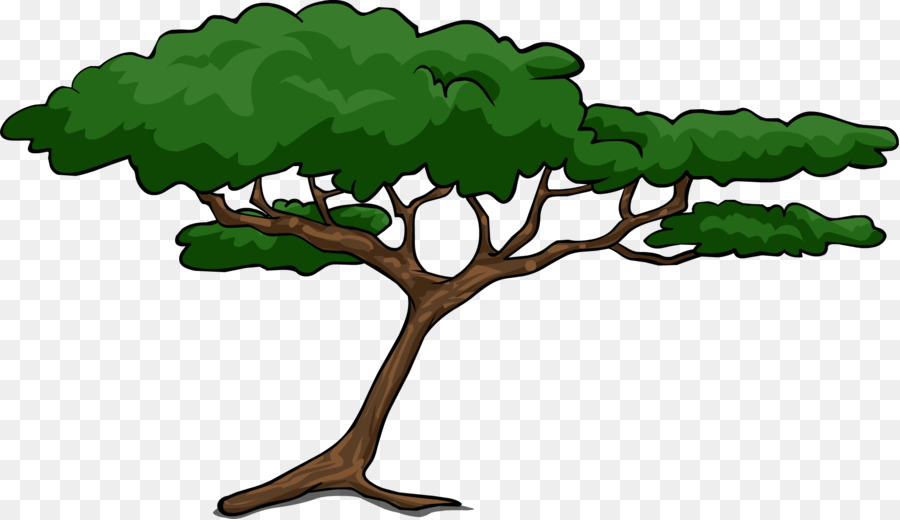 African Tree Png Download 2273 1312 Free Transparent African Trees Png Download Cleanpng Kisspng You can use this green tree png cutout object in photoshop manipulation. african tree png download 2273 1312