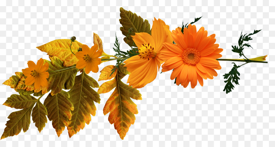 autumn flowers png summer background flowers png download - * - free