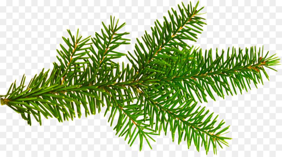 Christmas Leaf Png.Christmas And New Year Background Png Download 3704 2035
