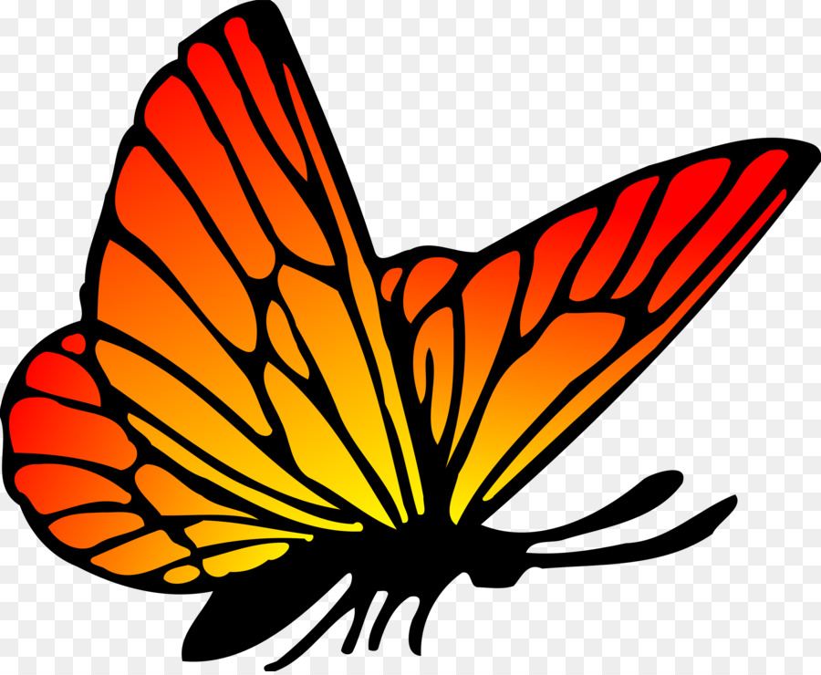 Monarch Butterfly Drawing Png Download 2400 1962 Free Transparent Butterfly Png Download Cleanpng Kisspng