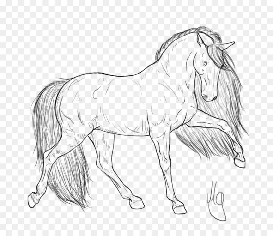 Frisone Cavallo Libro Da Colorare Puledro Standardbred Maschera