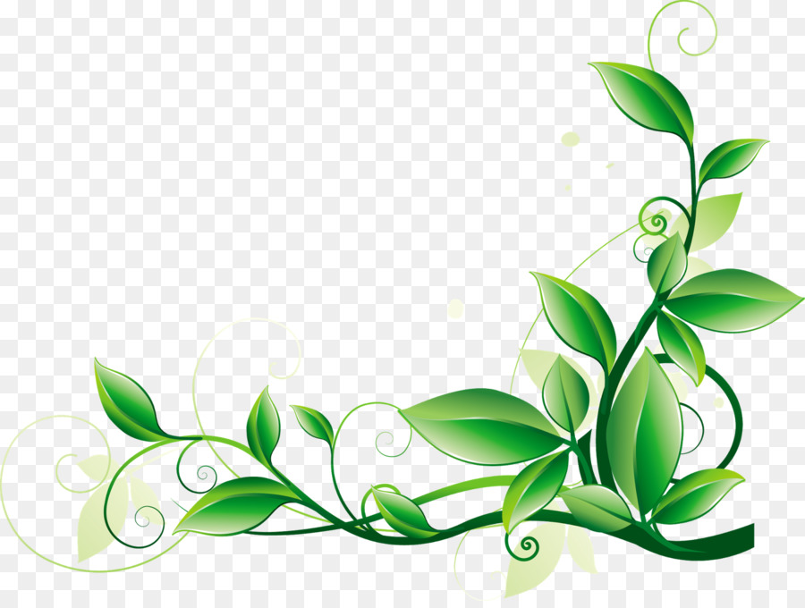 green leaf background png download 1600 1195 free transparent green png download cleanpng kisspng green leaf background png download