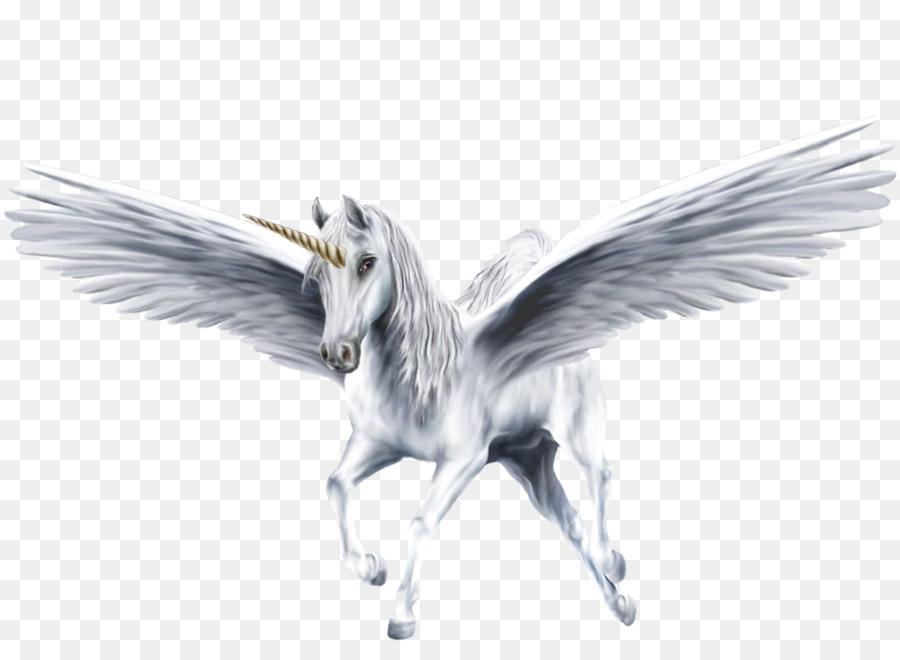 Pegaso Cavallo Alato Disegno.Pegaso Alato Cavallo Unicorno Pegasus Scaricare Png