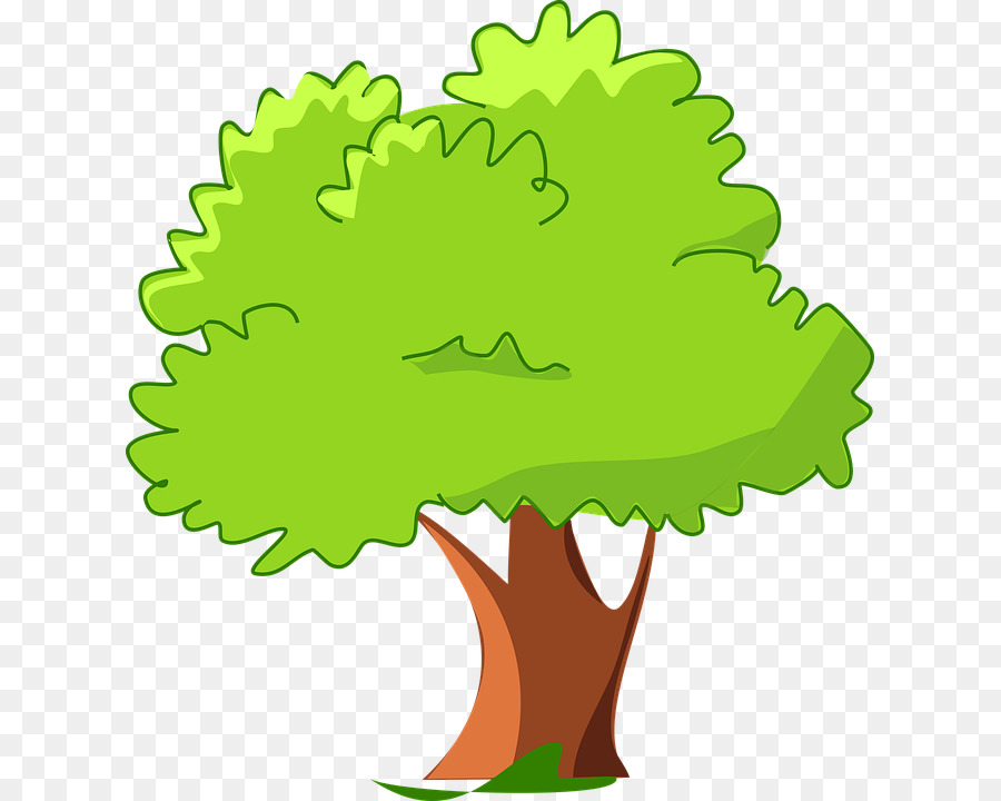 Oak Tree Drawing Png Download 673 720 Free Transparent Tree Png Download Cleanpng Kisspng Tree, heart tree, pink and red heart tree illustration, love, branch, flower png. oak tree drawing png download 673 720