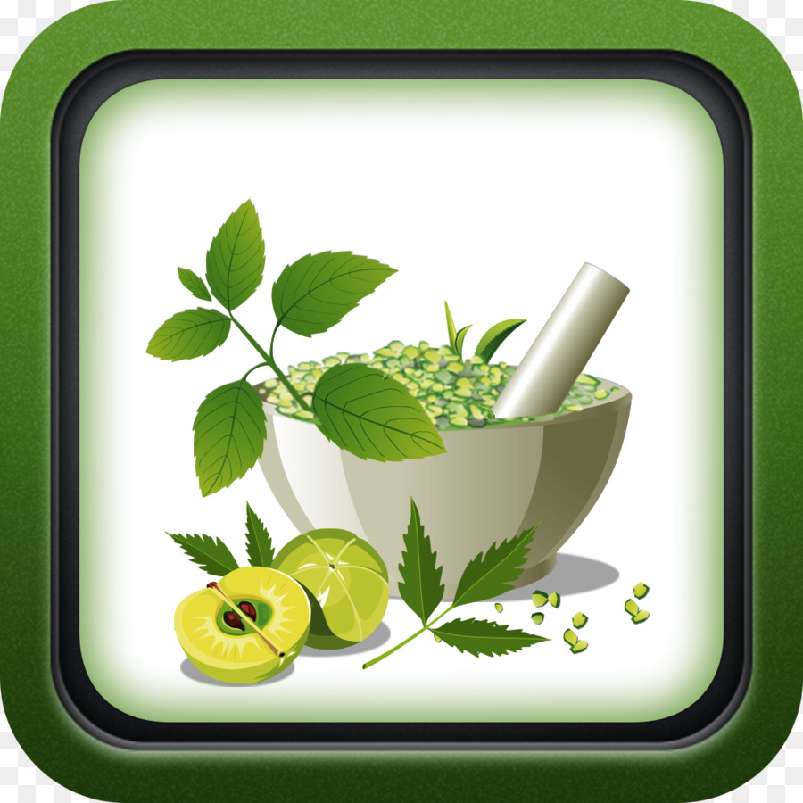 Medicine Cartoon Png Download 1024 1024 Free Transparent Ayurveda Png Download Cleanpng Kisspng