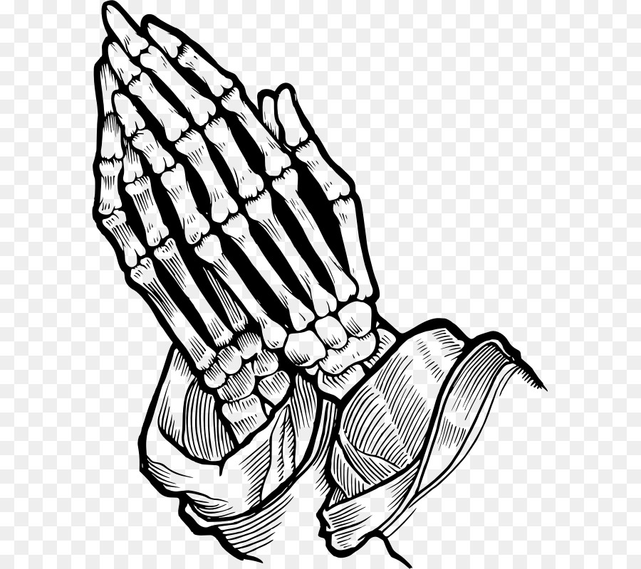 Human Skull Drawing Png Download 641 800 Free Transparent Praying Hands Png Download Cleanpng Kisspng Hand sketch hand tool hand model hand luggage character sketch hand sanitizer hand drum hand drawn sketch. human skull drawing png download 641