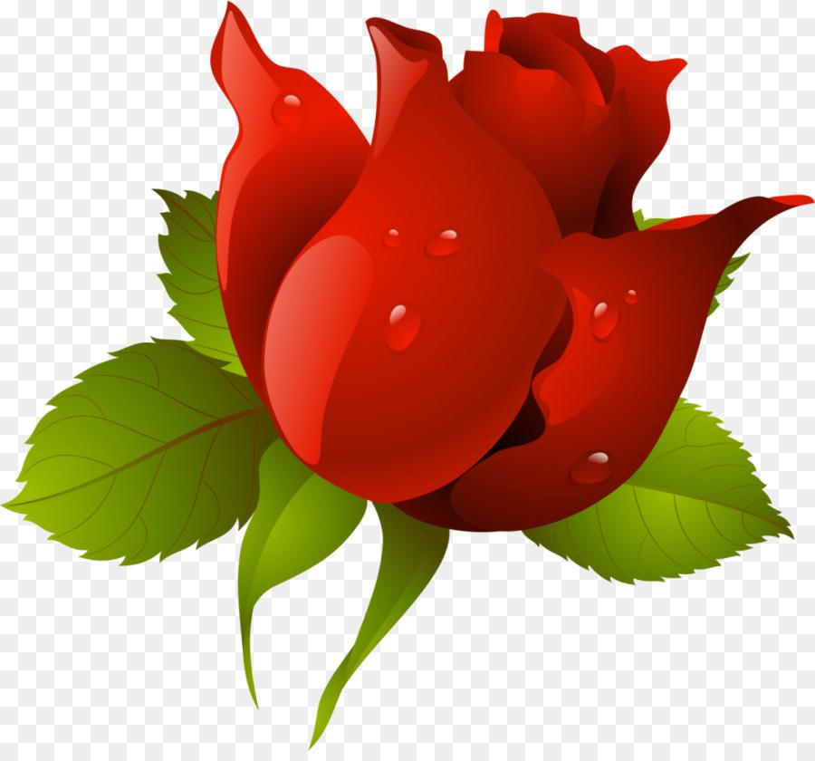 Love Rose Flower Png Download 1024 943 Free Transparent Flower Png Download Cleanpng Kisspng