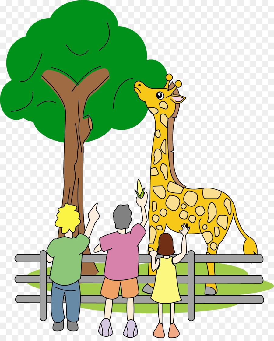 kisspng giraffe terrestrial animal wildlife mammal zoo 5ad71da31c62d9.6824455715240472671163