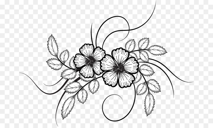 Black And White Flower Png Download 737 534 Free Transparent Flower Png Download Cleanpng Kisspng