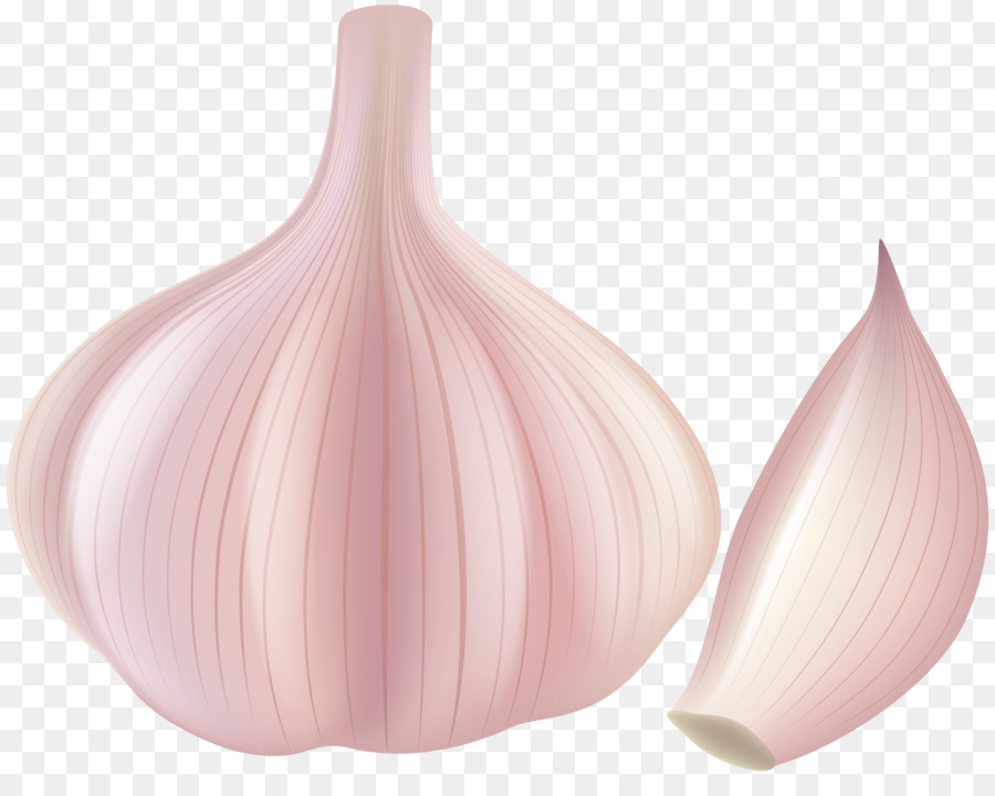 onion cartoon png download 8000 6236 free transparent garlic png download cleanpng kisspng onion cartoon png download 8000 6236