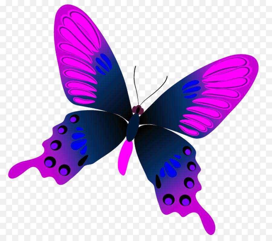 Картинки прозрачный фон бабочка