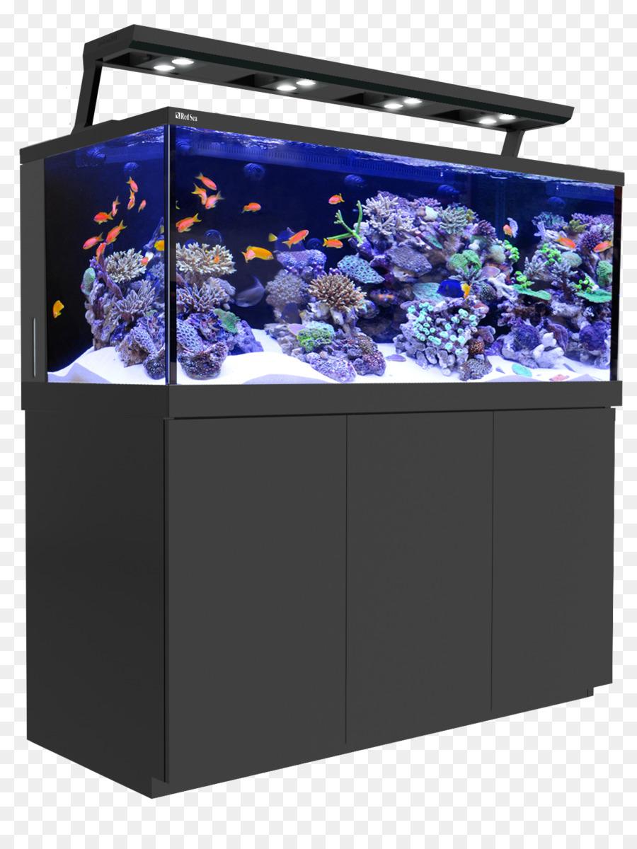 Red Sea Reef Aquarium Korallenriff Aquarien Aquarium Dekoration Png Herunterladen 1142 1500 Kostenlos Transparent Aquarium Beleuchtung Png Herunterladen