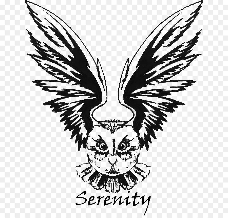Bird Line Drawing Png Download 702 854 Free Transparent Owl