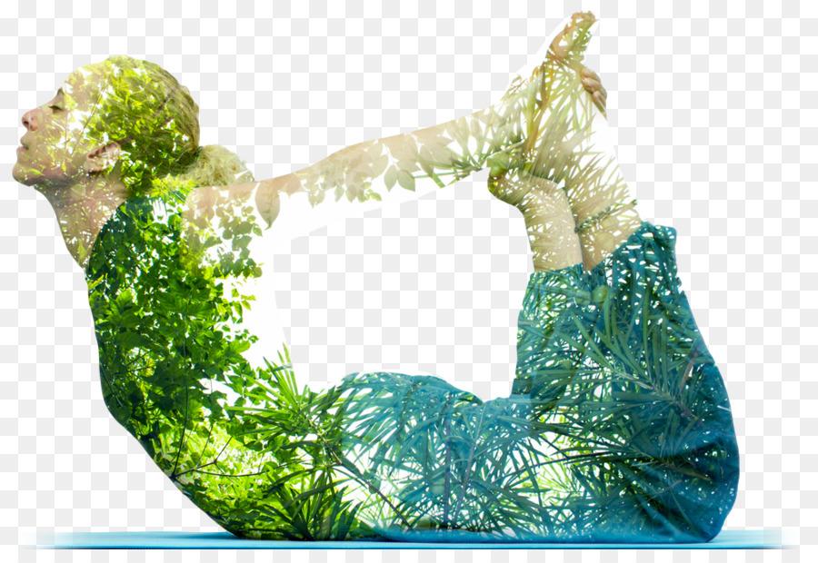 Yoga Background Png Download 1000 672 Free Transparent Yoga Png Download Cleanpng Kisspng