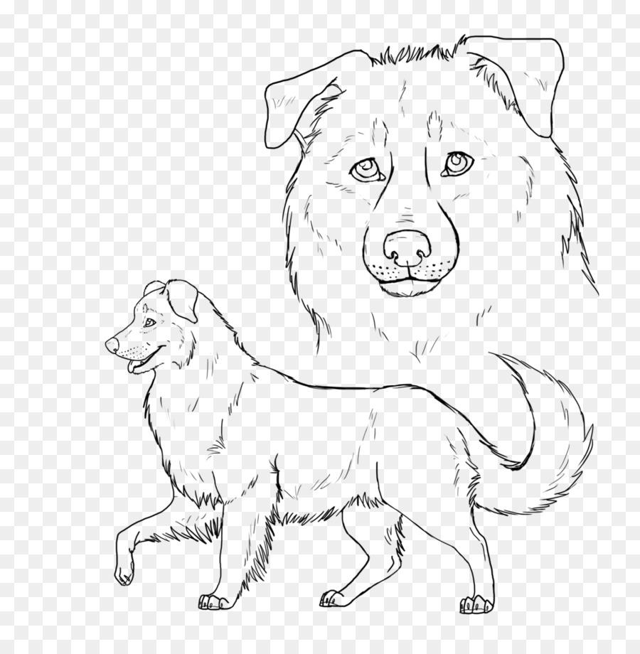 hunde ausmalbilder australian shepherd