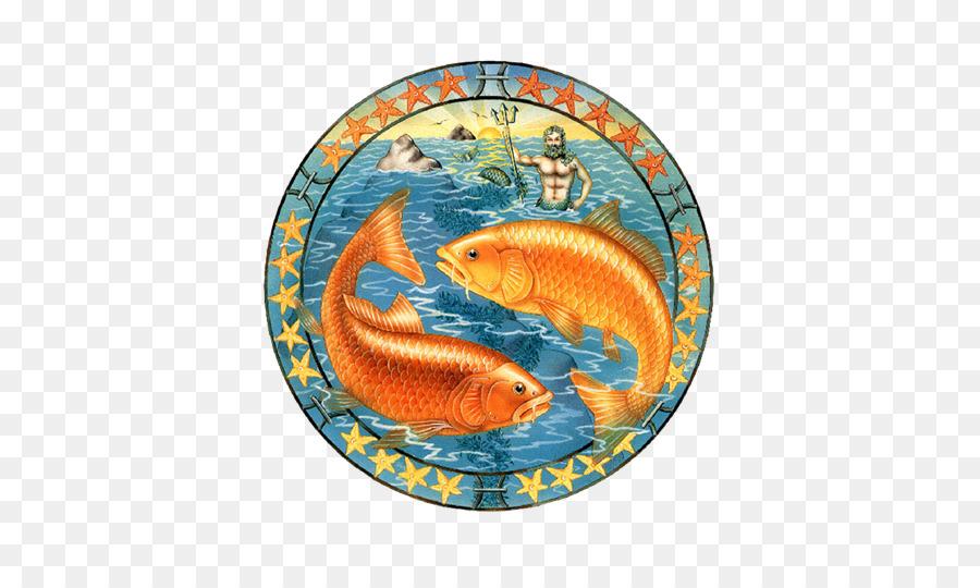 √ Sternzeichen Zwilling Und Fisch | Fischlexikon