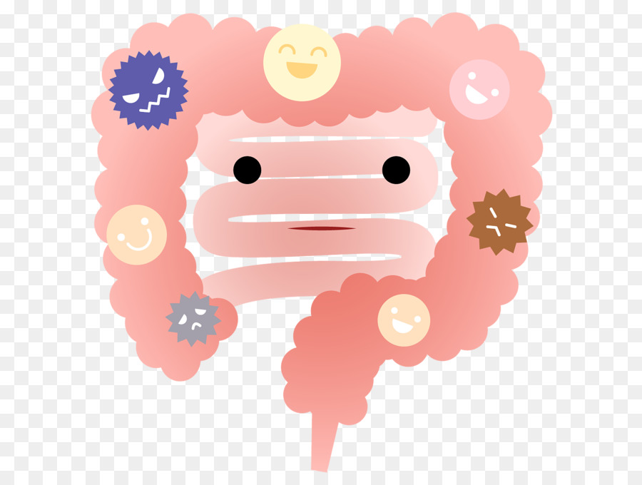 Bacteria Cartoon Png Download 1600 1200 Free Transparent Intestine Png Download Cleanpng Kisspng