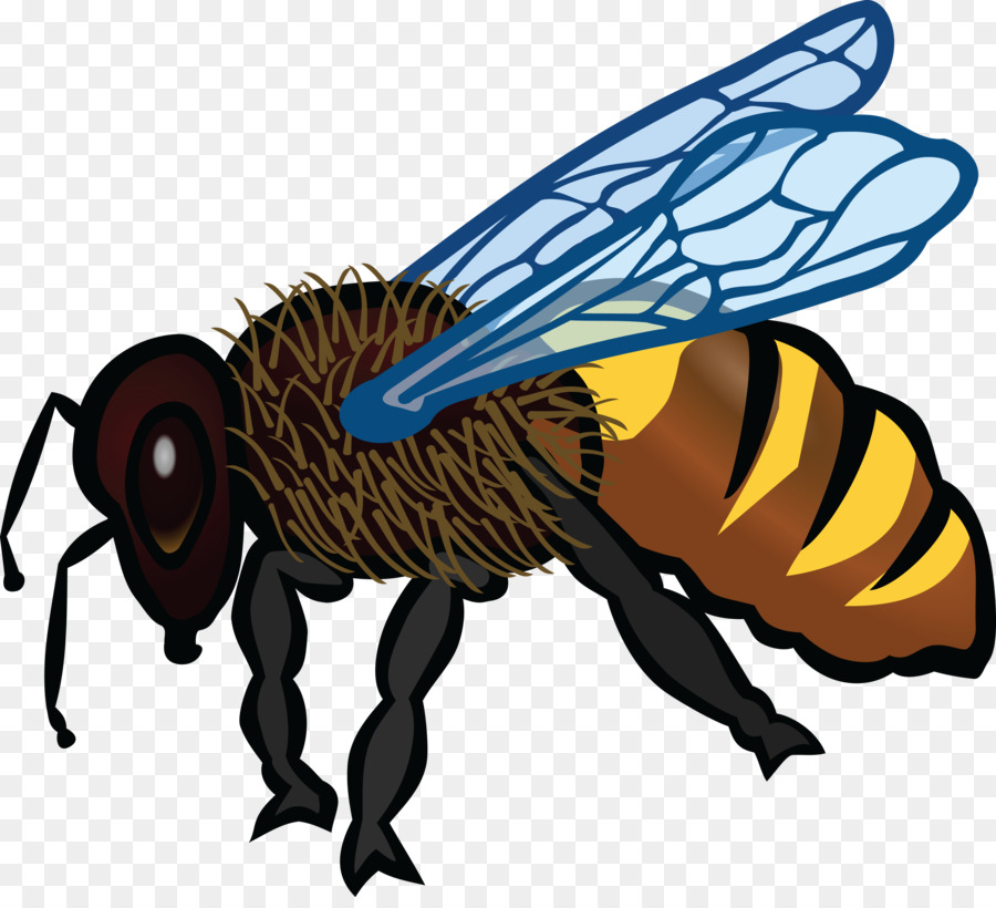 Bee Background Png Download 4000 3599 Free Transparent Bee Png Download Cleanpng Kisspng