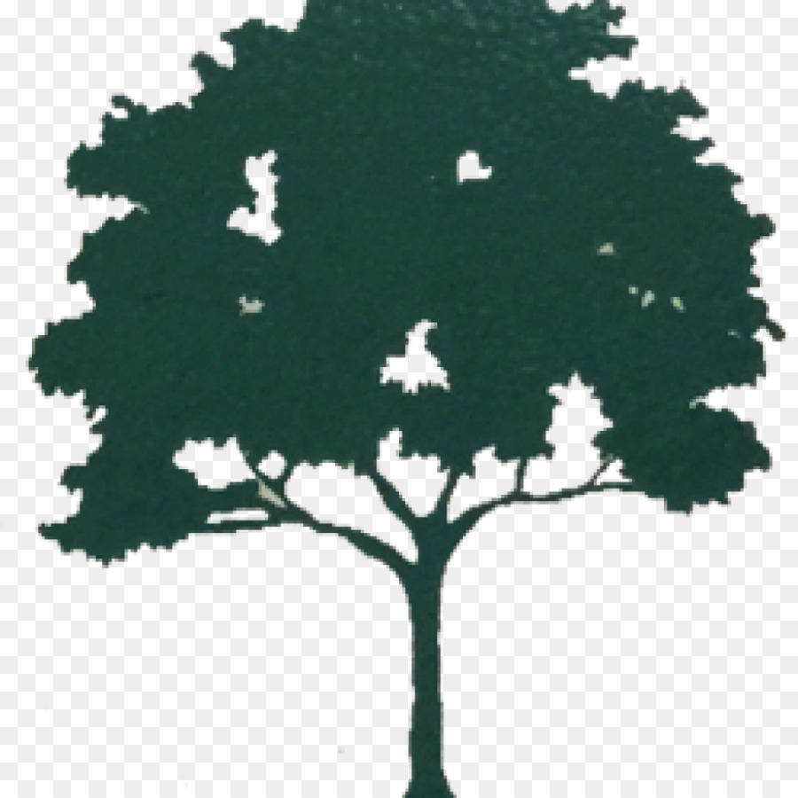 Tree Branch Silhouette Png Download 1024 1024 Free Transparent Tree Png Download Cleanpng Kisspng The kauri design can be built around a single tree, or on posts if you dont have a tree. tree branch silhouette png download